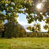 Terrains à vendre Clohars-Carnoet